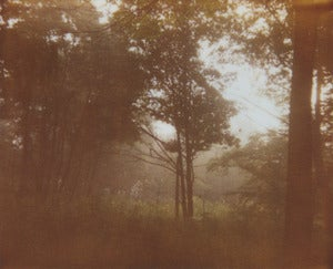 Image of photographic print, fog 2, 6x8&quot;