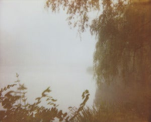 Image of photographic print, fog 3, 6x8""