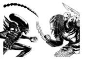 Image of ALIEN VS PREDATOR - BLACK/WHITE