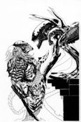 Image of ALIEN VS PREDATOR - BLACK/WHITE VERSION