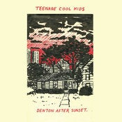 Image of TEENAGE COOL KIDS - Denton After Sunset