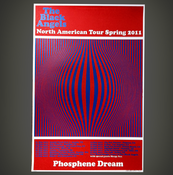 Image of Spring 2011 Tour Poster