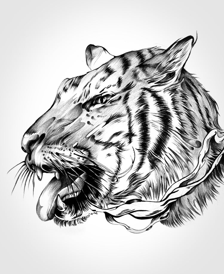 Image of The Tiger