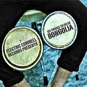 Image of 101 Things to do in Bongolia - 17 Tracks! (Compilation CD)