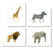 Image of Animals: Safari Set of 4