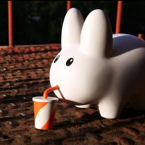 Image of A Labbit