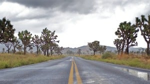 Open Road Joshua Tree CA