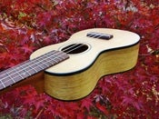 Image of Sailor Brand Spruce/Black Limba Soprano