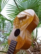 Image of Kiwaya Eco Series KS-5 KOA