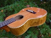 Image of Ohana Redwood/Myrtle Tenor Limited series