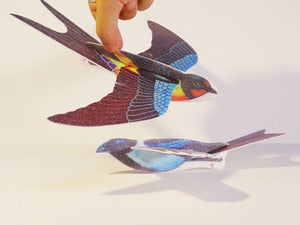 Image of Styrofoam Gliding Bird (Set of 4)