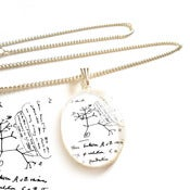 Image of Charles Darwin Transmutation of Species Necklace