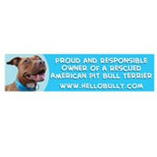 Image of Hello Bully Proud and Responsible Owner Car Magnet