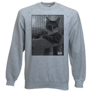 Image of Big Scary Monsters cat sweatshirt