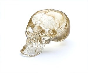 Image of Guilded Skull