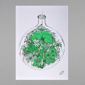Image of Terrarium