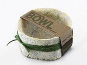 Image of Mushroom Bowl