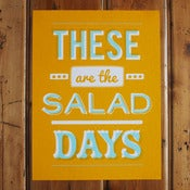 Image of Salad Days Poster
