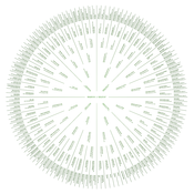 Image of Sunburst Family Tree Digital File | ready to print | $34-$42