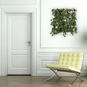 Image of Wallnatura x1 con plantas