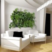 Image of Wallnatura x4 con plantas