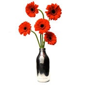Image of Retro British Milk Bottle Vase