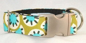 Image of Sunburst Dog Collar in the category  on Uncommon Paws.