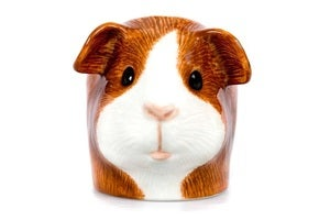 Image of DUTCH GUINEA PIG EGG CUP