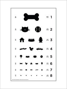 Image of 18&quot; x 24&quot; Dog Eye Chart - Standard Size Poster