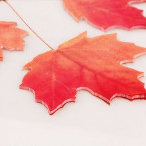 Image of Appree Maple Leaf Post-it