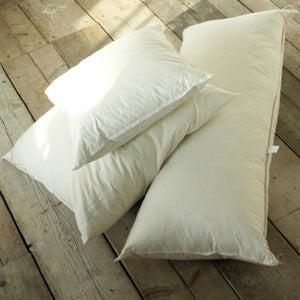 Image of Feather Cushion Inner