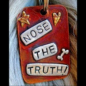 Image of Nose the Truth Dog ID Tag