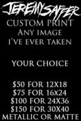 Image of CUSTOM METALLIC PRINTS (LARGE) 12x18 16x24 24x36 30x40