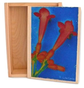Image of KEEPSAKE BOX: Trumpet Vine.