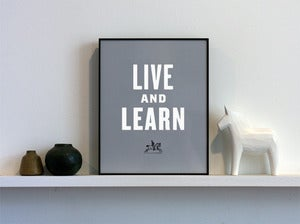 Image of Live and Learn