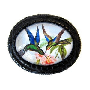 Image of Humminbird Carved Resin Brooch by Hotcakes Design