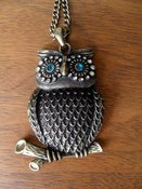 Image of Blue Eyed Owl Necklace