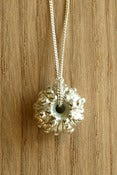 Image of Urchin Necklace 3D
