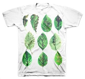 Image of BOTANIST tee shirt