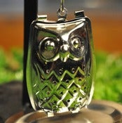 Image of Night Owl Tea Infuser