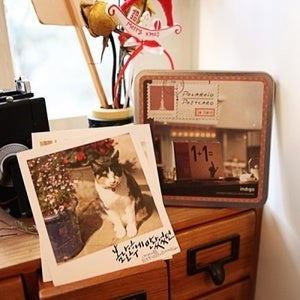 Image of Polaroid postcard tincase set