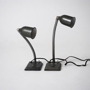 Image of Twin Lamps
