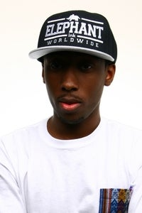 Image of Worldwide Snapback Gray