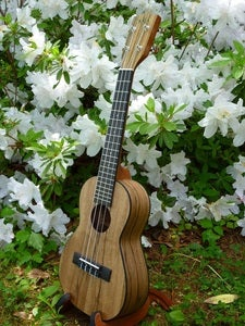 Image of Kala Pacific Walnut Concert