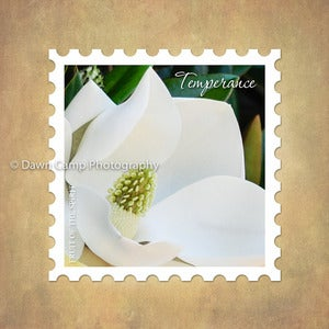 Image of Temperance 10&quot; x 10&quot; Magnolia Stamp Motif Canvas from the Fruit of the Spirit Collection