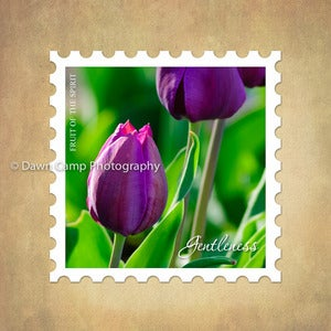 Image of Gentleness 10&quot; x 10&quot; Tulip Stamp Motif Canvas from the Fruit of the Spirit Collection