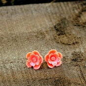 Image of Sail Away - Coral Blooming Studs
