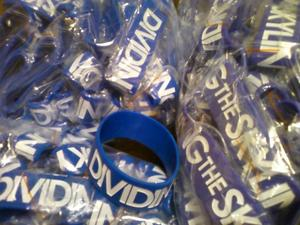 Image of NEW &quot;Dividing The Skyline&quot; 1-Inch Wristband
