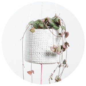 Image of Crochet Planter (white with pompom)