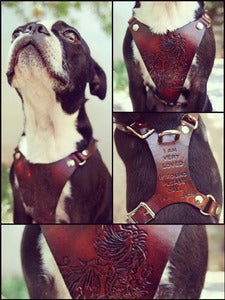 Image of Custom Leather Hand Tooled Dog Harness